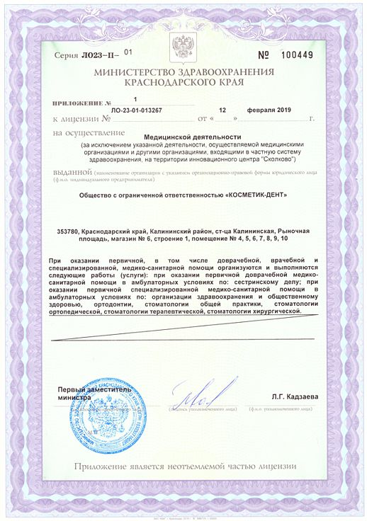 Приложение к лицензии на право ведения медицинской деятельности